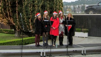 singers-tree