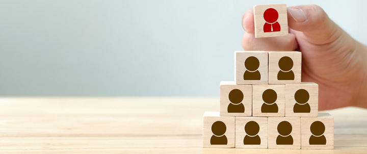 Deree Master in Organizational Psychology